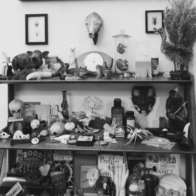In the Studio: Vic Delirium's Big Little Worlds