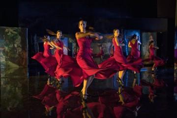 """Saura's """"Flamenco Flamenco"""""""