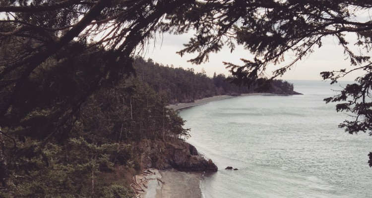 The view from the Deception Pass Bridge. Image courtesy of Claire Reiner.