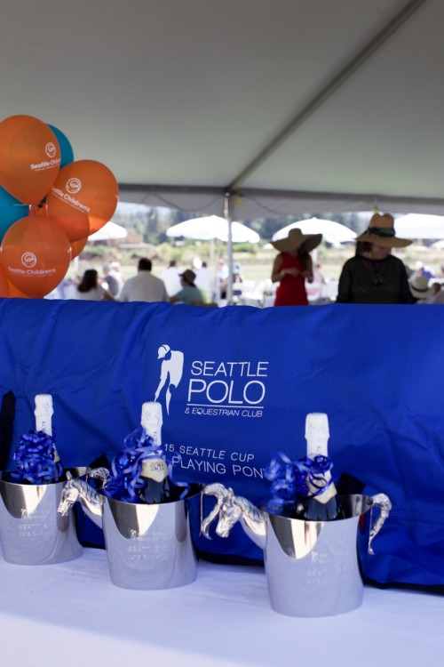 Seattle Polo Club: The Crowd
