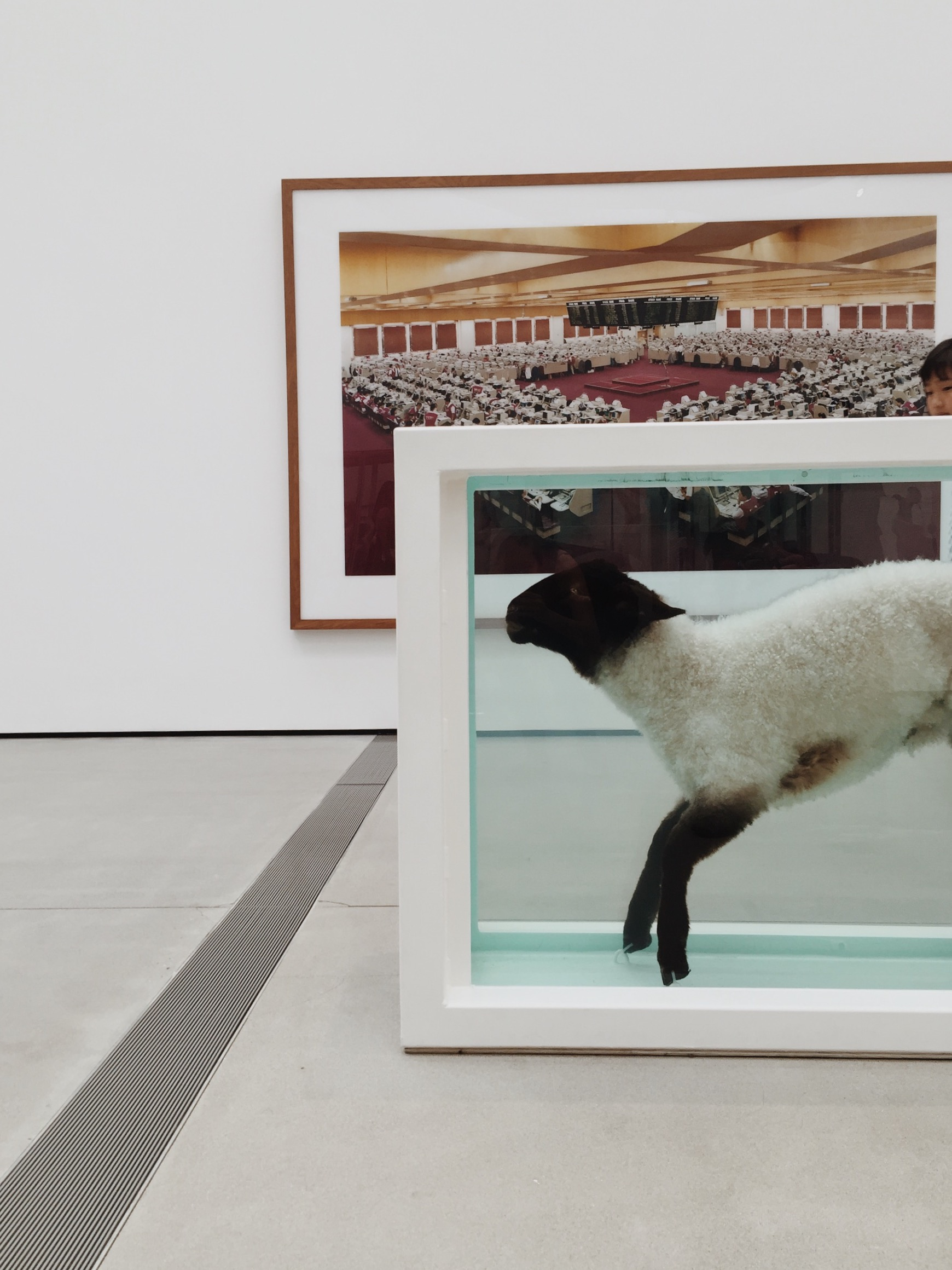 """""""Away from the Flock""""--Damien Hirst"""