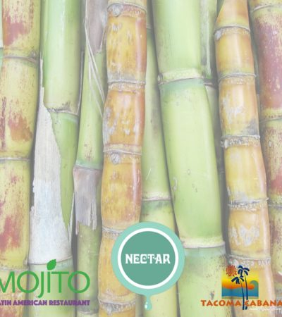 Reduce the Suffering in Nicaragua's Sugar Cane Workers: A Fundraiser for PASE, May 25