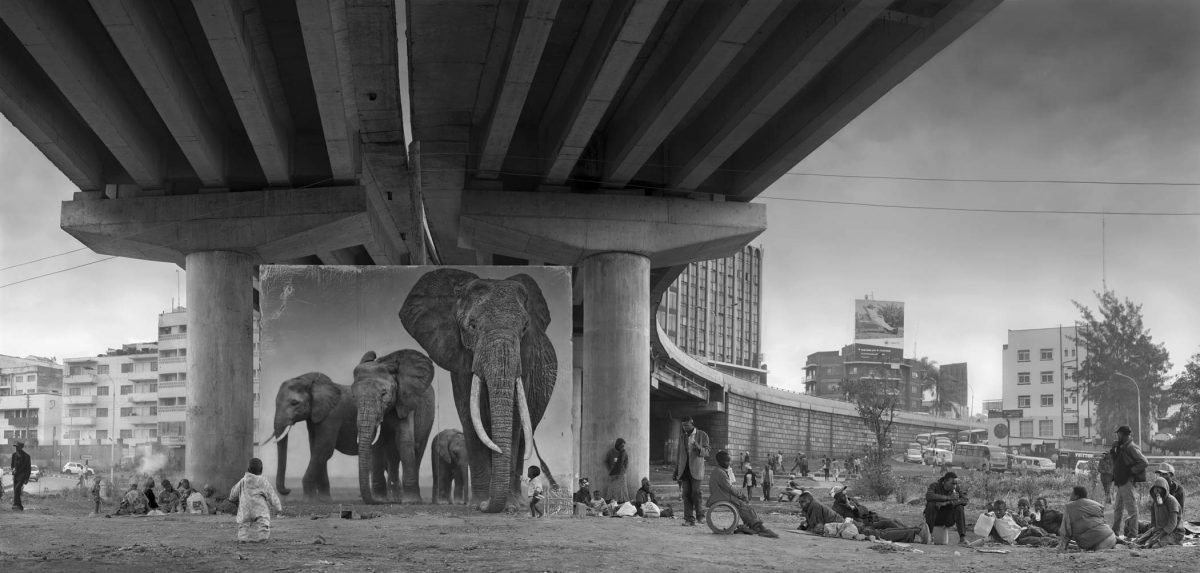 Underpass with elephants from Inherit the Dust by Nick Brandt
