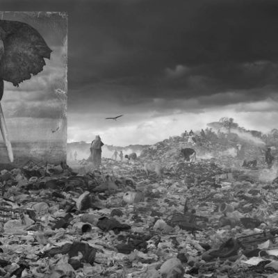 Nick Brandt&#8217;s <em>Inherit the Dust</em> at Fahey/Klein Gallery