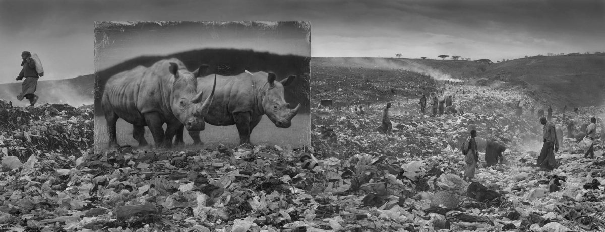 Wasteland with rhino and residents from Inherit the Dust by Nick Brandt