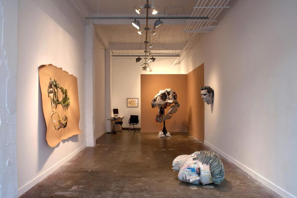 Installation view of Scott Fife's exhibition American Beauty at Platform Gallery
