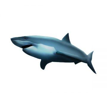 Shark emoji