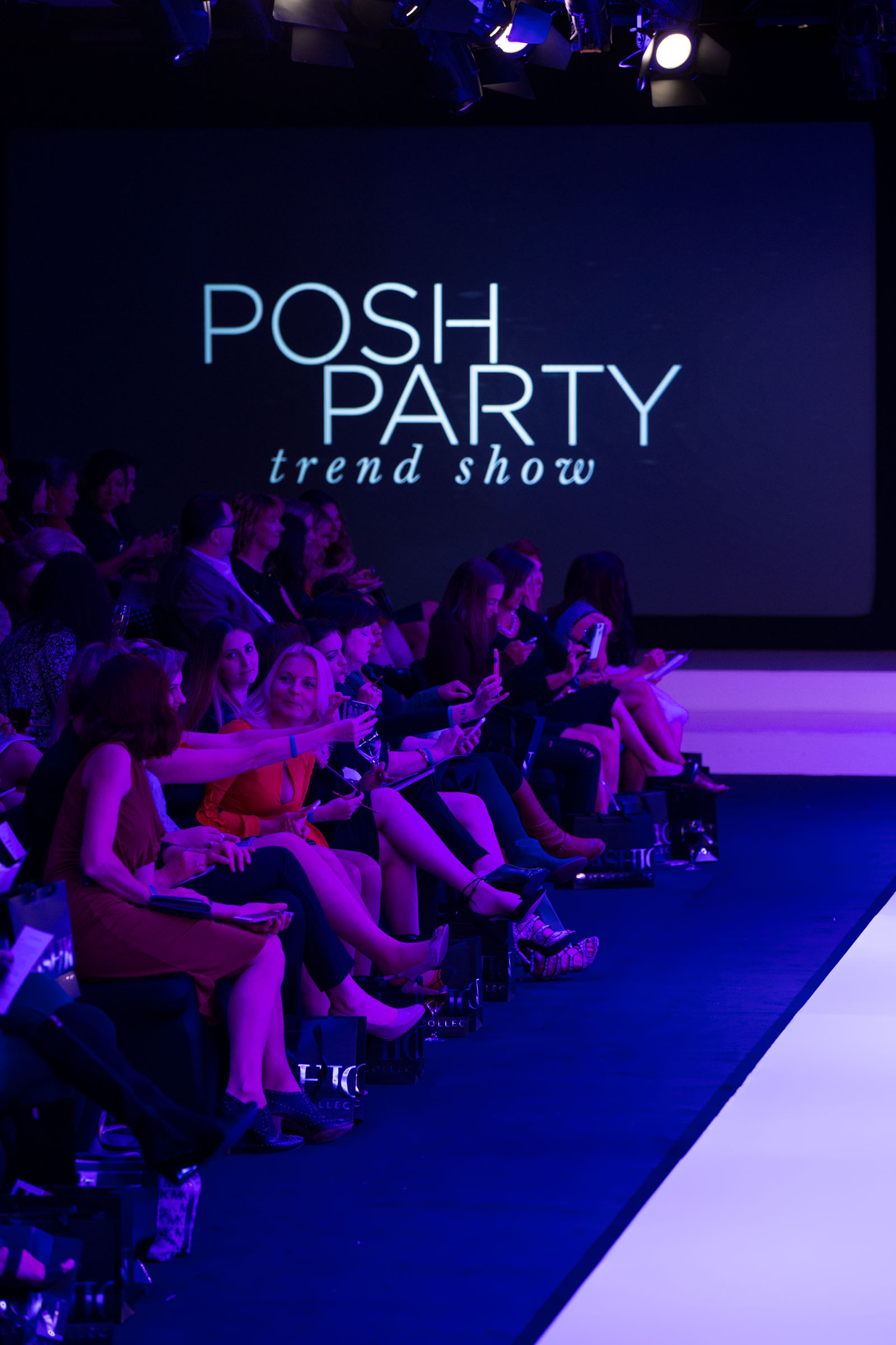Posh Party Trend Show 2016
