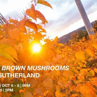 Alan Sutherland's <em>Little Brown Mushrooms</em> at OtB, October 6-9