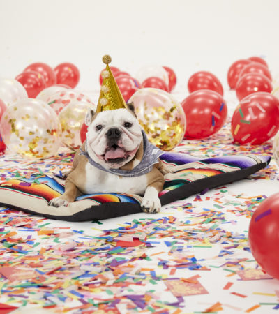 Pop-In @Nordstrom Celebrates The Year of The Dog